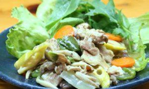 中華風あんかけ炒め|すっぽんスープ使用レシピ