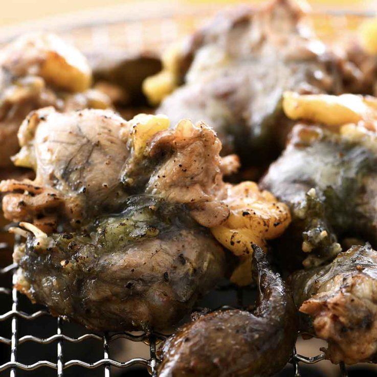 キャンプにバーベキューに「すっぽんバーベキュー!」 ワイルドにスッポンを食べてみませんか? 800g前後 × 1箱